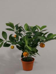 Куст с апельсинами в кашпо 32 см