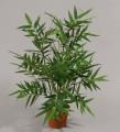 Бамбук в кашпо 38 см