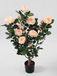 Куст розы в кашпо 86 СМ