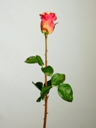 Роза алая 70см