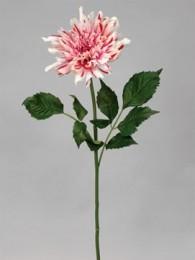 Далия розово-кремовая 80см