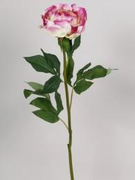 Пион розово-кремовый 69 см