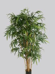 Бамбук 230см