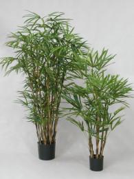 Бамбук Рафис 250 см