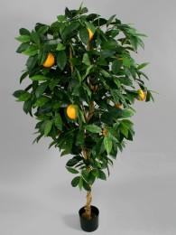 Дерево с апельсинами 170 см