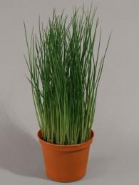 Трава в кашпо 30 см