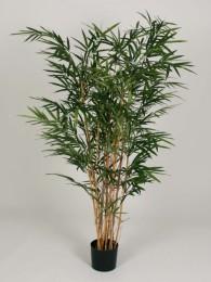 Бамбук 220 см