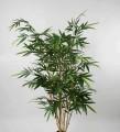 Бамбук 180 см