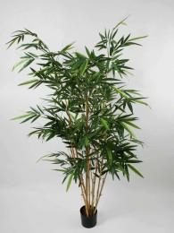 Бамбук 190 см, 8 стволов