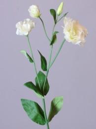 Лизиантус кремовый 75 см