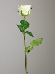 Роза кремовая 52см