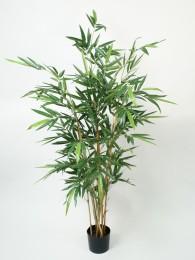 Бамбук 160 см