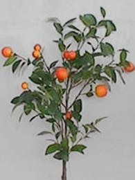 Ветка с апельсинами 90 см
