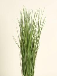Трава в кашпо 85см