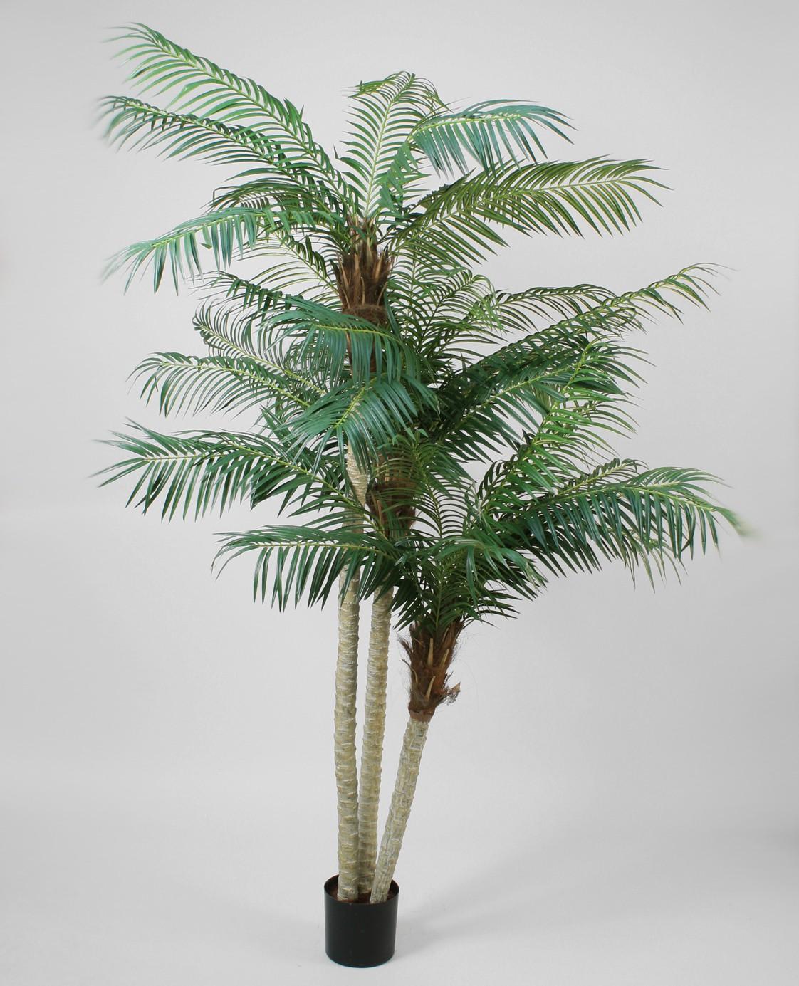 Пальма 230 см