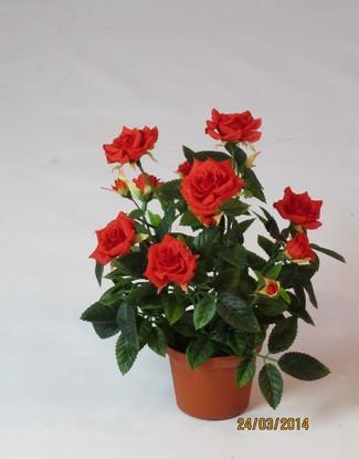 Роза в кашпо красная 22 см