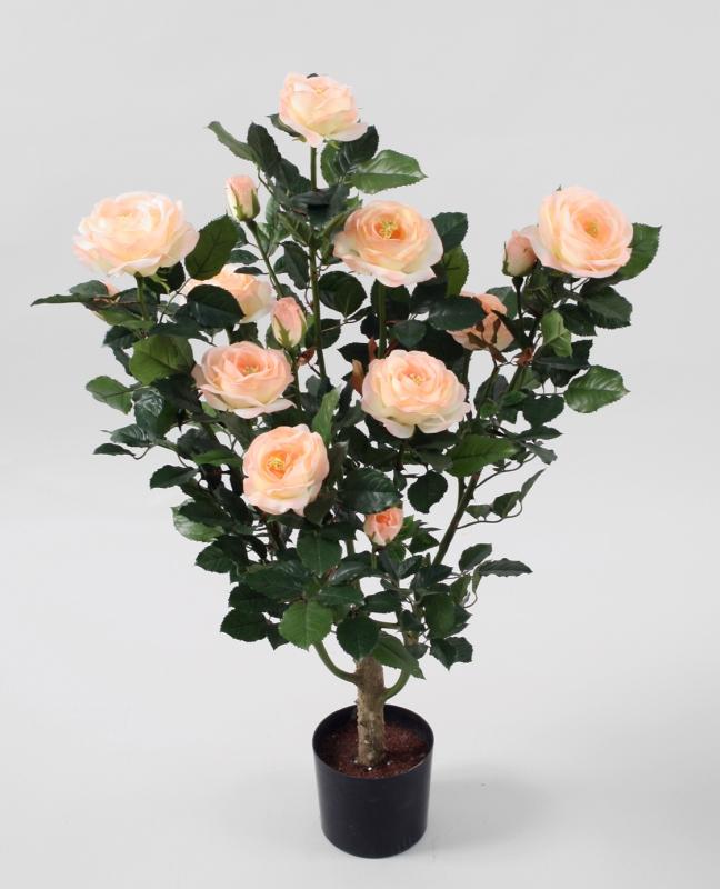 Куст розы в кашпо 86 СМ в нашем интернет-магазине