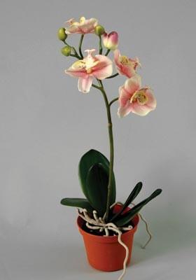Орхидея в кашпо 37 см