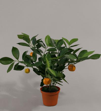 Куст с апельсинами 32 см